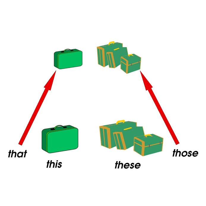 Đại từ chỉ định (Demonstrative pronouns)